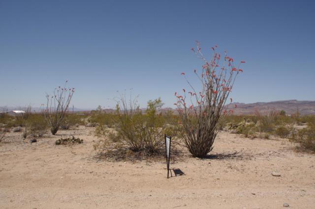 Unk S Calva Rd, Yucca, AZ 86438 (MLS #1001447) :: The Lander Team