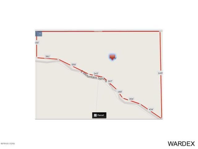 000 N Mountain Springs Rd, Hackberry, AZ 86411 (MLS #1001482) :: The Lander Team