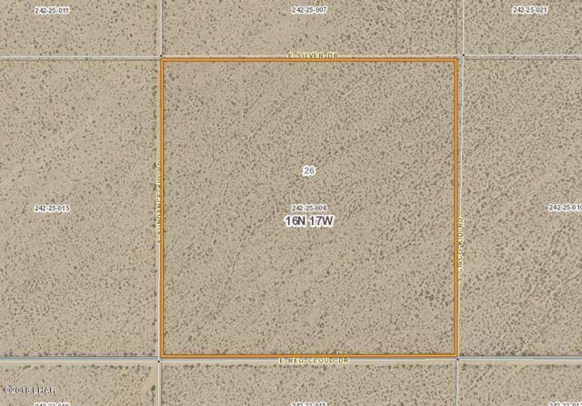 00 Red Cloud Drive, Yucca, AZ 86438 (MLS #1003579) :: The Lander Team