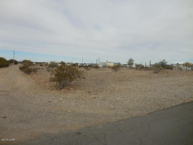 810 Camel St, Quartzsite, AZ 85346 (MLS #1004191) :: The Lander Team