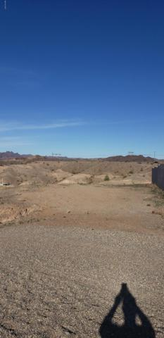 311-53-70g Crows Nest, Parker, AZ 85344 (MLS #1004470) :: The Lander Team