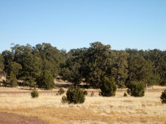 42900 Shadow Rock Trail, Seligman, AZ 86337 (MLS #1004819) :: The Lander Team
