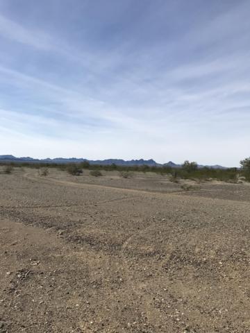54613 65th St, Salome, AZ 85348 (MLS #1005252) :: The Lander Team