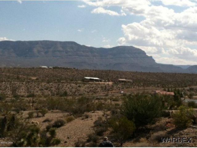 160 W Sunfish Way, Meadview, AZ 86444 (MLS #1005548) :: The Lander Team