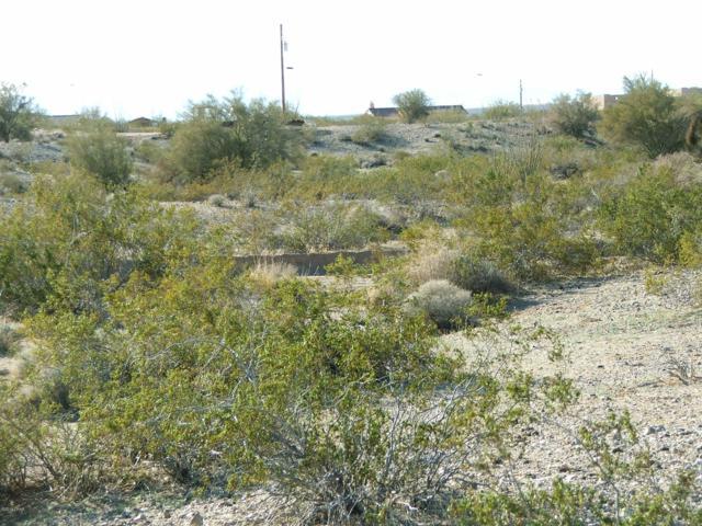 Lot 83 Dorothy Rd, Yucca, AZ 86438 (MLS #1005573) :: The Lander Team