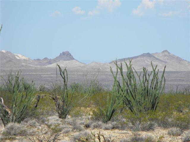 54 W Desierto Rd, Yucca, AZ 86438 (MLS #1005718) :: The Lander Team