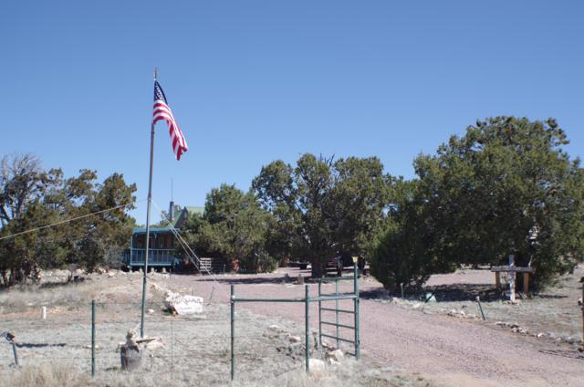 54263 N Shadow Mountain Pkwy, Seligman, AZ 86337 (MLS #1006157) :: The Lander Team