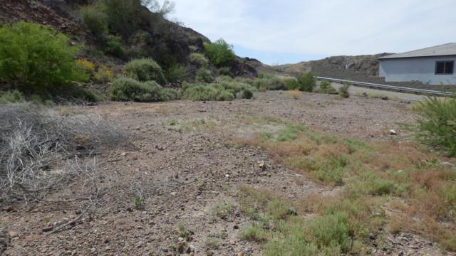 9231 Riverside Dr, Parker, AZ 85344 (MLS #1006434) :: The Lander Team