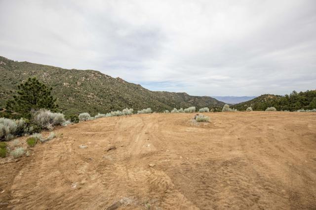 000 Silk Tassle, Kingman, AZ 86401 (MLS #1006942) :: Realty One Group, Mountain Desert