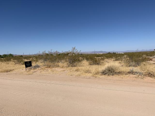 16425 S Loma Linda Ave, Yucca, AZ 86438 (MLS #1006967) :: The Lander Team