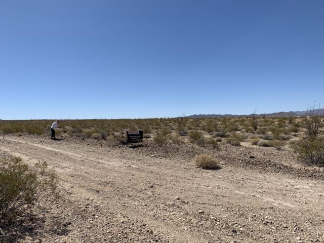 16012 Bert Ave, Yucca, AZ 86438 (MLS #1006968) :: The Lander Team