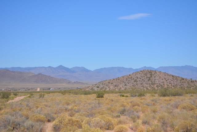 Lot 116 Huntington Ave, Kingman, AZ 86409 (MLS #1007449) :: The Lander Team