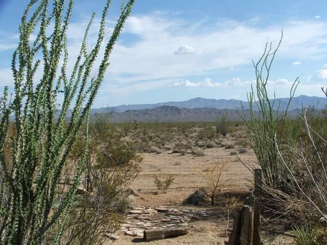 74 S Angell Rd., Yucca, AZ 86438 (MLS #1008271) :: The Lander Team