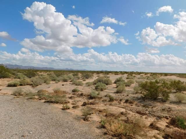 49201 Ranegras Pl, Bouse, AZ 85325 (MLS #1008383) :: Coldwell Banker