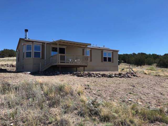 47305 N Williamson Valley Rd, Seligman, AZ 86337 (MLS #1009408) :: Coldwell Banker
