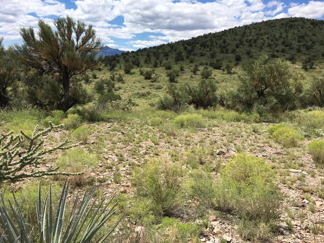 160 Acrs Harris Valley Ranch Rd, Seligman, AZ 86337 (MLS #1010135) :: Coldwell Banker