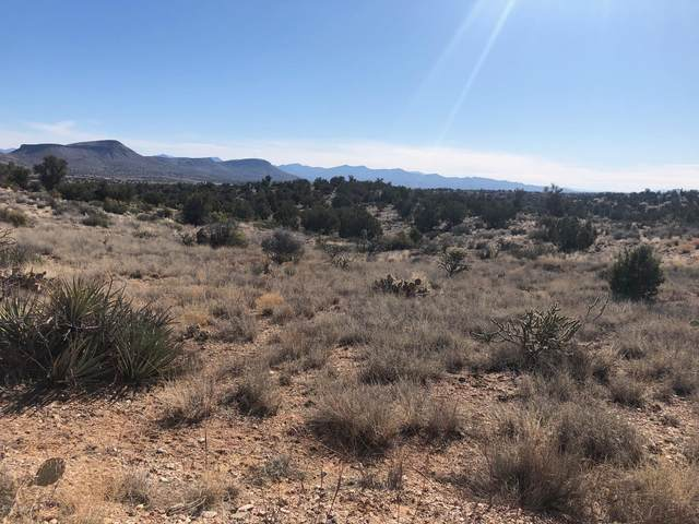 3300 N Austin Rd, Kingman, AZ 86401 (MLS #1011009) :: The Lander Team