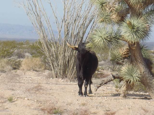 0000 Carrow Rd Lot 5, Yucca, AZ 86438 (MLS #1011119) :: Coldwell Banker