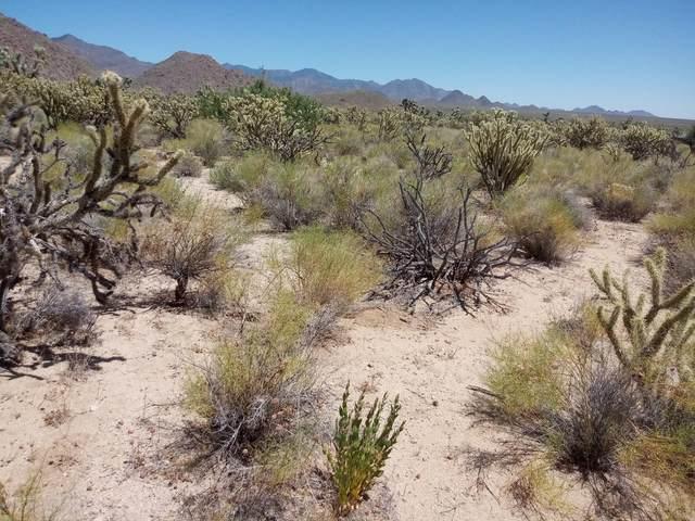 11844 S Alan Rd, Yucca, AZ 86438 (MLS #1011415) :: Coldwell Banker