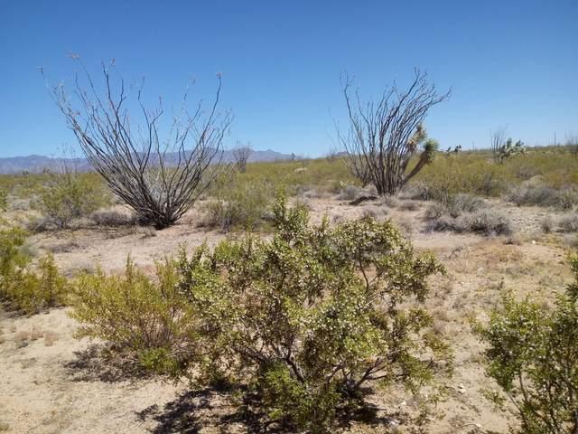 000 Cameron Rd, Yucca, AZ 86438 (MLS #1011448) :: The Lander Team