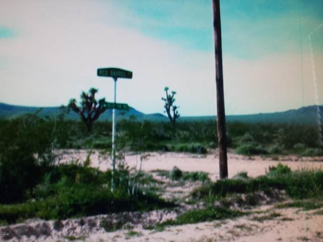6b Daytona Dr Dr, Yucca, AZ 86438 (MLS #1011697) :: Realty One Group, Mountain Desert