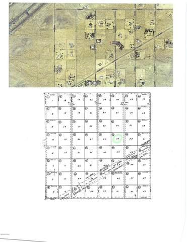 16361 S Johnson Ln, Yucca, AZ 86438 (MLS #1012072) :: The Lander Team