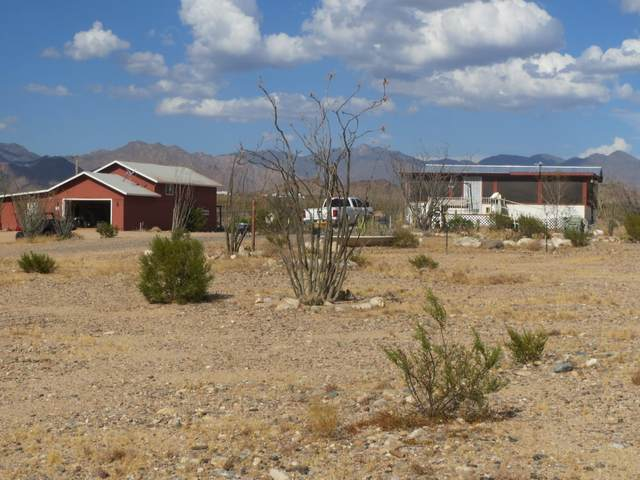 13770 Cameron Rd, Yucca, AZ 86438 (MLS #1012103) :: The Lander Team