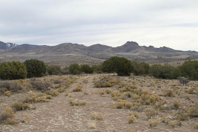 Lot 245 Prairie Schooner, Wikieup, AZ 85360 (MLS #1012149) :: Coldwell Banker