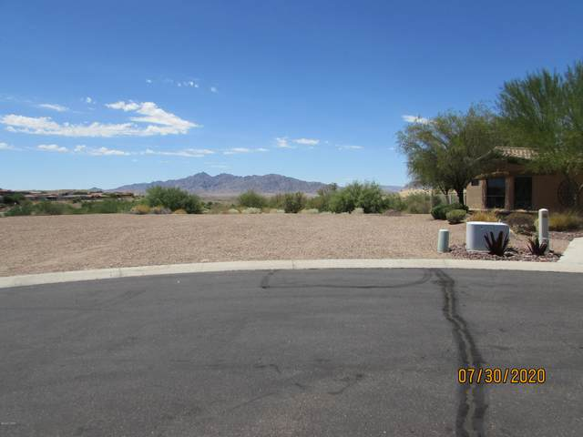 1827 E Troon Dr, Lake Havasu City, AZ 86404 (MLS #1012150) :: Realty One Group, Mountain Desert