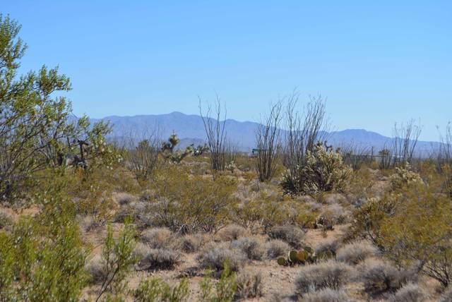 A2 N1/2 Carmen Rd, Yucca, AZ 86438 (MLS #1012244) :: Realty One Group, Mountain Desert