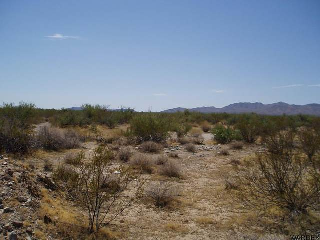 Unk S Trigger Rd @ Cholla W Rd, Yucca, AZ 86438 (MLS #1012833) :: Realty One Group, Mountain Desert