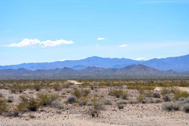 Lot 3132 Kickapoo Dr, Yucca, AZ 86438 (MLS #1013167) :: The Lander Team