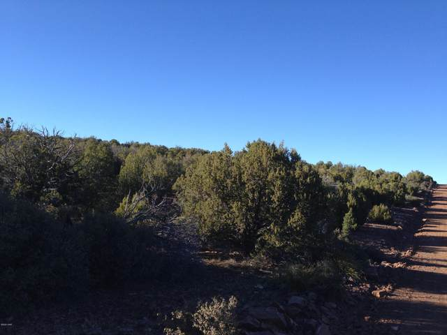 Lot 138 Velvet Antler, Kingman, AZ 86401 (MLS #1013236) :: Realty One Group, Mountain Desert