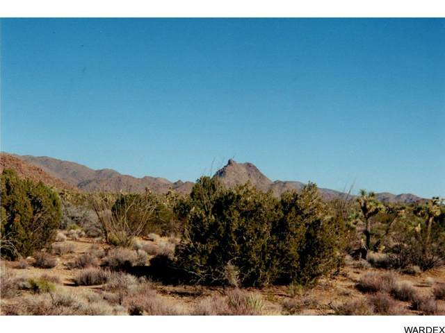 439 Tom Mix Rd, Yucca, AZ 86438 (MLS #1013357) :: Coldwell Banker