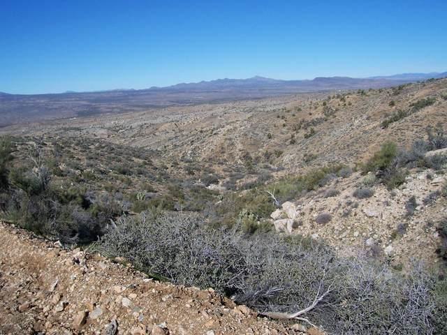 Lot 73 New Water Well, Kingman, AZ 86401 (MLS #1013814) :: Coldwell Banker
