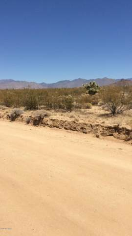 3501 Wild Bill Road, Yucca, AZ 86438 (MLS #1013894) :: Realty One Group, Mountain Desert