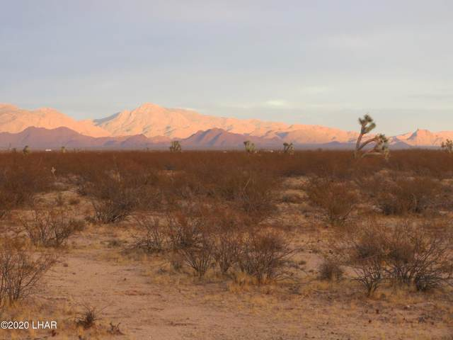 Lot 228 Pipeline Road, Yucca, AZ 86438 (MLS #1014160) :: Realty One Group, Mountain Desert