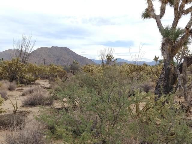 11275 Bennie Rd, Yucca, AZ 86438 (MLS #1014390) :: Realty One Group, Mountain Desert