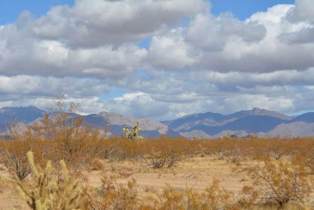 3 Lots Cameron Rd, Yucca, AZ 86438 (MLS #1015750) :: The Lander Team