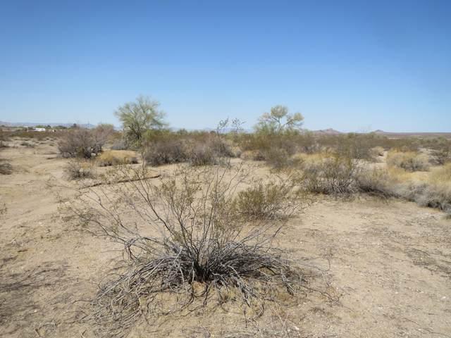 Lot 46 Rio Vista Unit 1 Subdivision, Yucca, AZ 86438 (MLS #1015994) :: The Lander Team