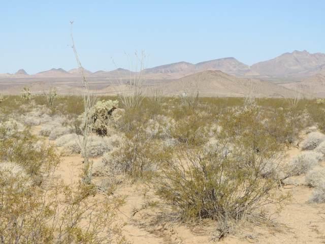 Lot 58 Rio Vista Unit 2 Subdivision Dr, Yucca, AZ 86438 (MLS #1015995) :: The Lander Team