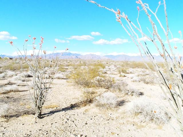 -3040 Castle Butte Rd, Yucca, AZ 86438 (MLS #1016009) :: Realty One Group, Mountain Desert