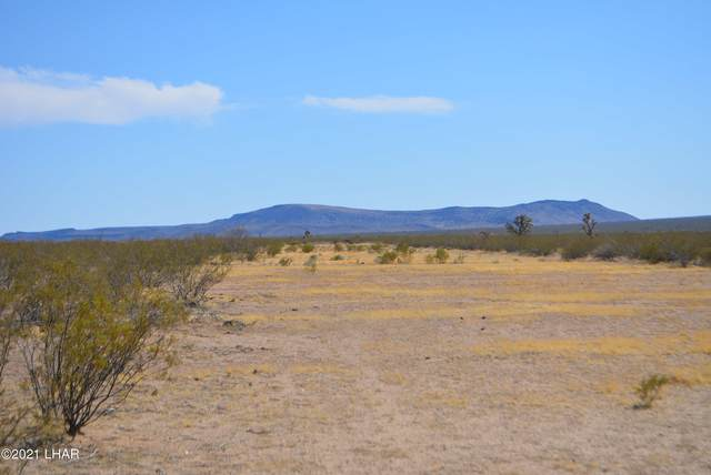 979a Gene Autry, Yucca, AZ 86438 (MLS #1016060) :: Coldwell Banker