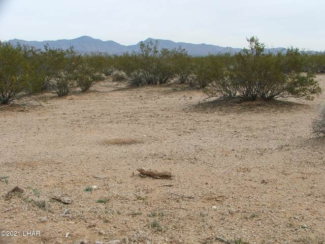 Parcel 660 Doc Holliday Rd, Yucca, AZ 86438 (MLS #1016343) :: Coldwell Banker
