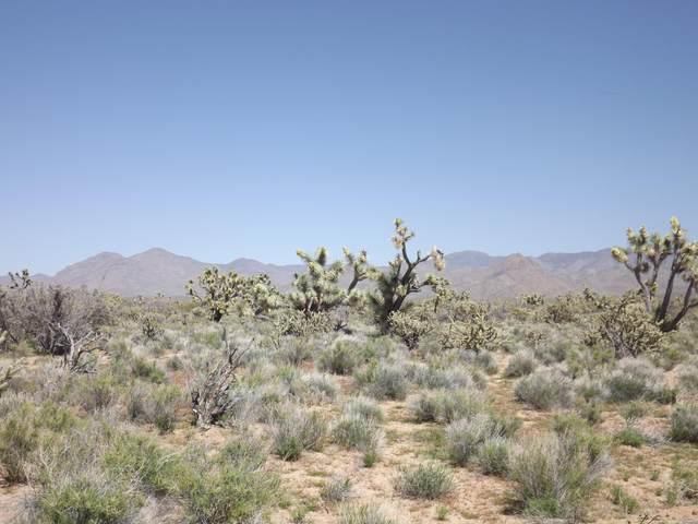 Parcel1047 Kit Carson Dr, Yucca, AZ 86438 (MLS #1016442) :: The Lander Team