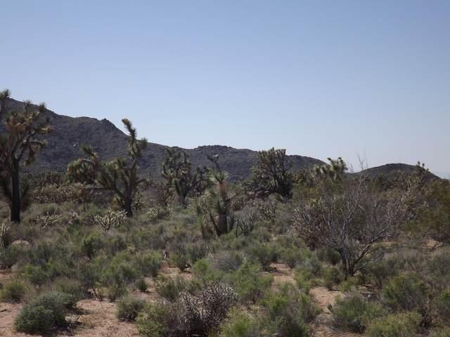 Parcel1048 Kit Carson Dr, Yucca, AZ 86438 (MLS #1016443) :: The Lander Team