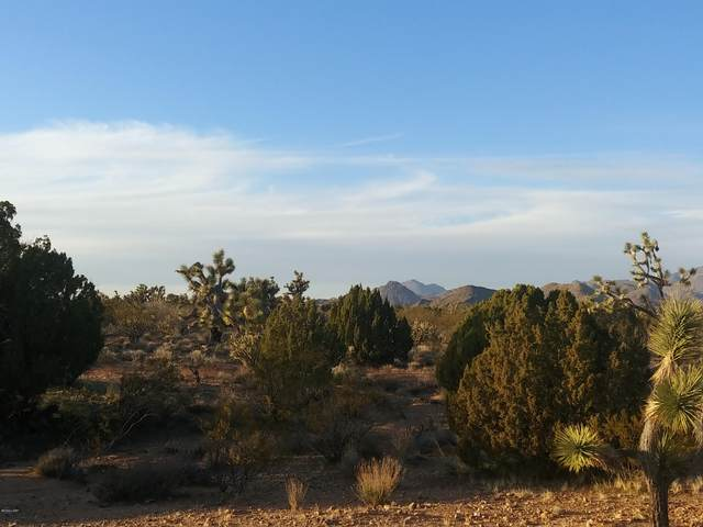 2076 Cd S Cheyenne (20Acres Well*Septic) Rd, Yucca, AZ 86438 (MLS #1016919) :: The Lander Team
