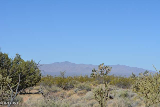 195 S Diamondback Rd, Yucca, AZ 86438 (MLS #1017273) :: The Lander Team