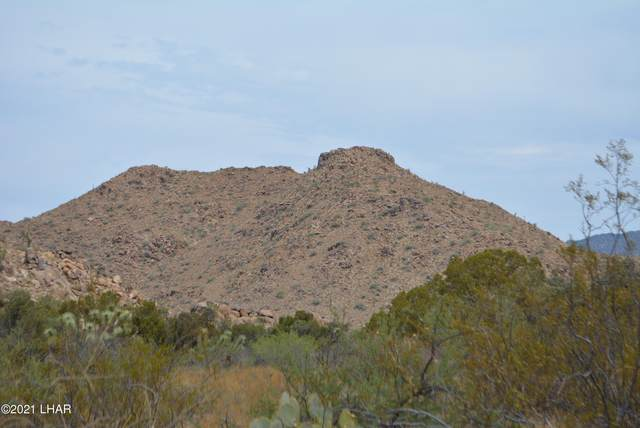 23 S Cheyenne Rd, Yucca, AZ 86438 (MLS #1017298) :: The Lander Team