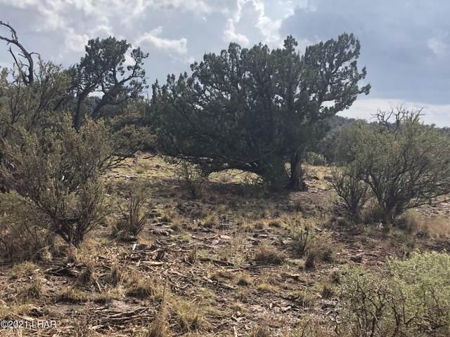 29565 W Rock Ridge Rd, Seligman, AZ 86337 (MLS #1017336) :: The Lander Team